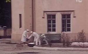 Zaraza 1972 screenshot
